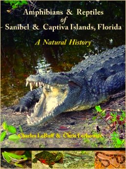 Amphibians and Reptiles of Sanibel and Captiva Islands, Florida